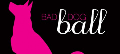 Buzz: Bad Dog Ball