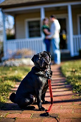 Photo courtesy of April Ziegler Photography<br>www.aprilziegler.com