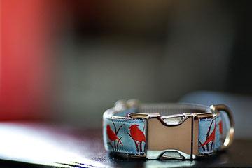 The pattern dubbed 'Quiet Birds Homecoming' is Scherzer's best selling collar.