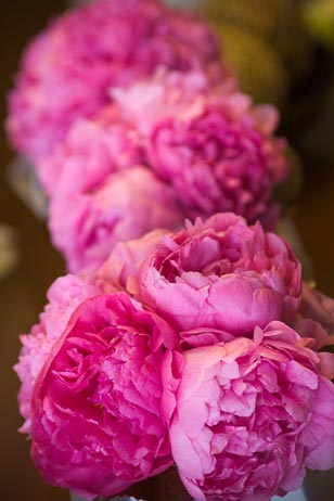 Peonies are a very popular flower of choice for brides in 2009--from bouquets and boutonnières to simple but aromatic accents to centerpieces.