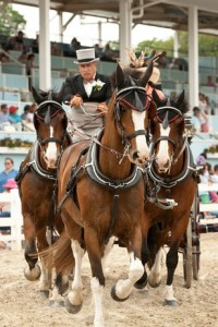 The Devon Horse Show and Country Fair is one of the largest and most prestigious outdoor equestrian events in the country.