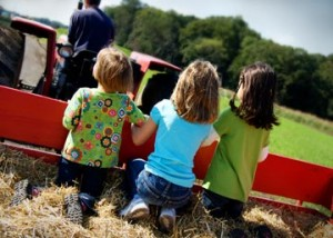 Linvilla's popular Harvest Hayrides in September are Saturday and Sundays from 10am to 5pm. Hayrides also run from October 1st through November 7th: Monday through Friday 12:30 to 4pm; Saturday and Sunday 10am to 5pm.