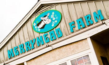 Enjoy Harvest Days at Lansdale's popular Merrymead Farm