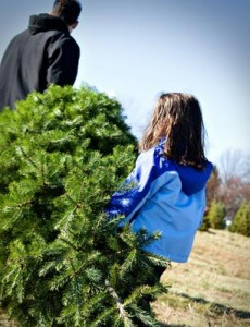 Create family memories of a lifetime by cutting down your own Christmas tree this season!
