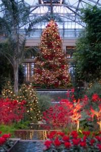 A Longwood Gardens Christmas runs through January 9, 2011.
