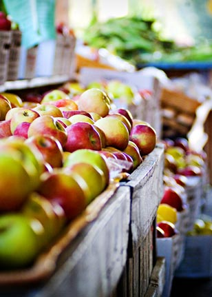 Wondering what to do with all the apples you've just gathered at Linvilla? Visit FoodInJars blogger Marisa McClellan's cooking demonstration at 4 p.m. She will be sure you leave with a few fun and yummy ideas!
