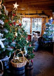 Varner's Farm has an adorable shop