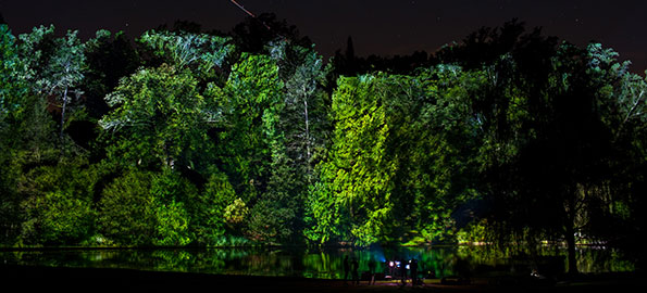 Buzz: Longwoods Garden's Nightscape