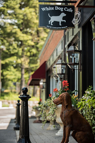 Located in Haverford Square's former Dujour Market, White Dog Haverford transformed the footprint and exterior-creating the intimate feeling of dining in an upscale home with a continued theme and love of dogs.