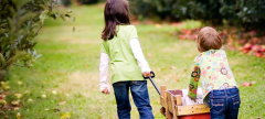 Buzz: Fall Events at Linvilla Orchards