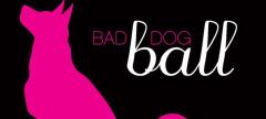 Buzz: Bad Dog Ball