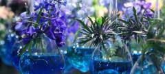 The Philadelphia Flower Show: Springtime in Paris
