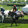 Buzz: Winterthur's Point-to-Point