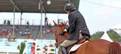 Buzz: The 115th Devon Horse Show and Country Fair!