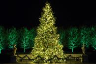 Longwood Gardens Celebrates Christmas à la Française